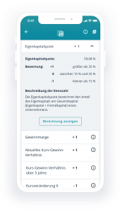 TransparentShare - Rating key figures - Levermann strategy